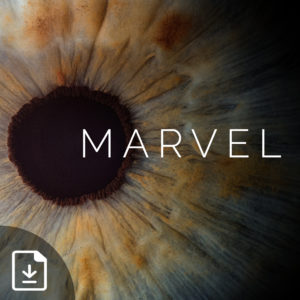 Marvel: What Jesus Did