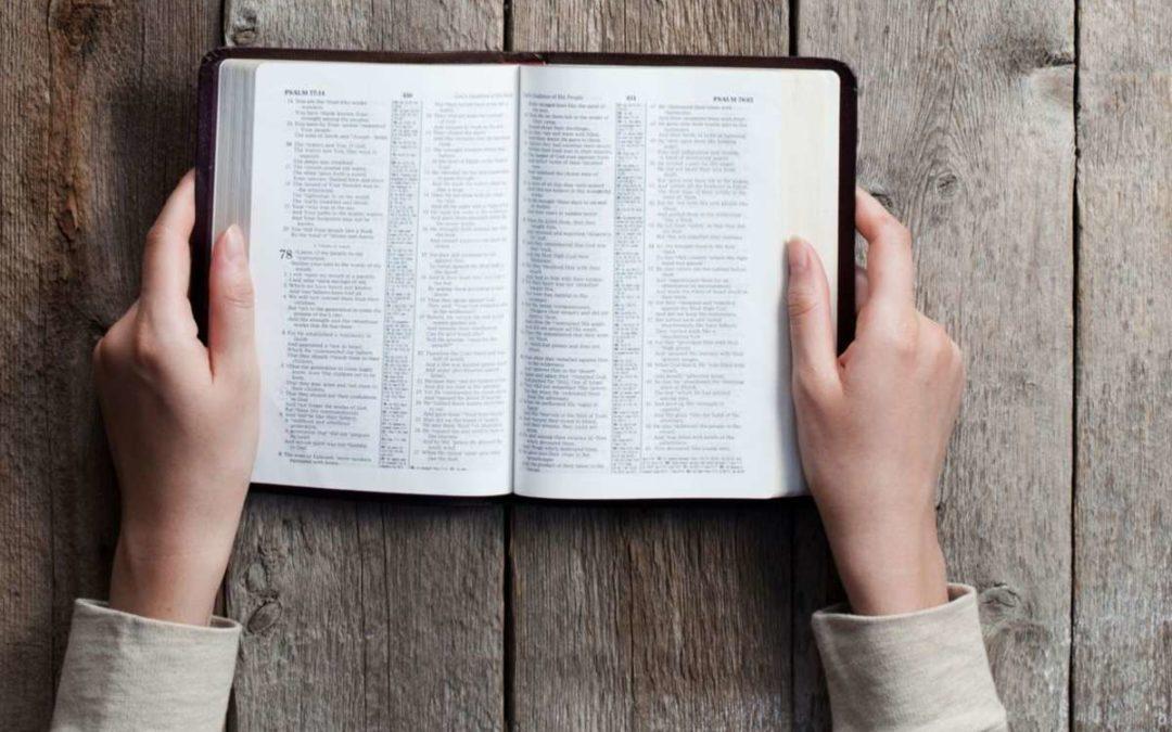 Precept Study of Hebrews: Week 9
