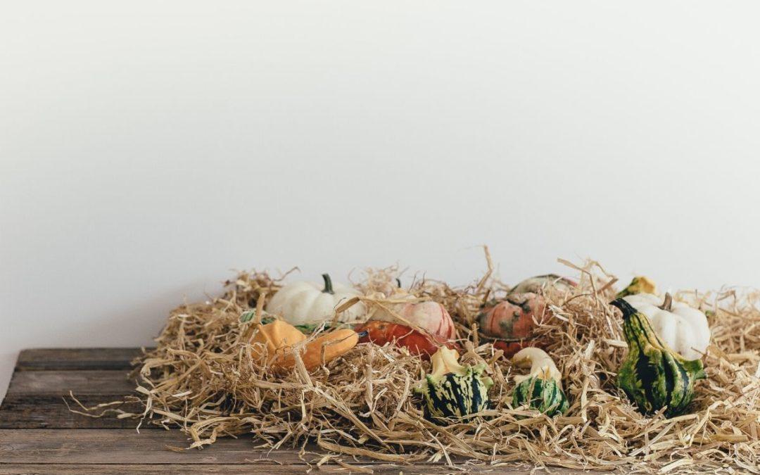 Thanksgiving as a Spiritual Discipline