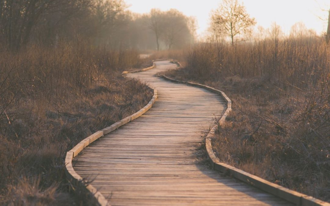 What Is the Cost of Following Jesus?